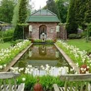 Ein seltener Moment der Ruhe: Wenn die 800 weißen Tulpen in voller Blüte stehen, dürfen sich die Gärtner auch mal zurücklehnen und staunen.