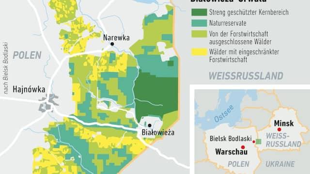 Ein Drittel des Waldes liegt auf polnischem Gebiet, zwei Drittel gehören zu Weißrussland.
