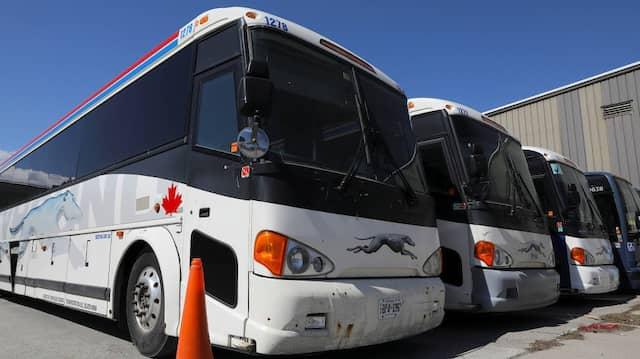 Busse des Unternehmens in Toronto, Kanada