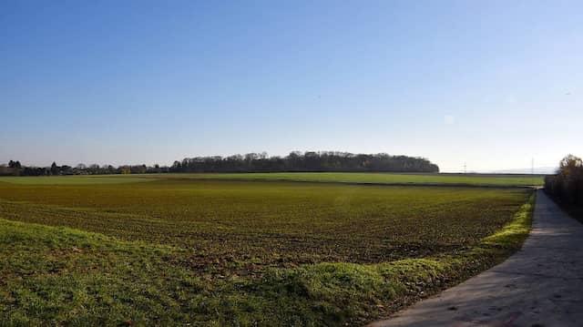 Bisher Brachland: Hier soll ein neuer Stadtteil für Wiesbaden entstehen.