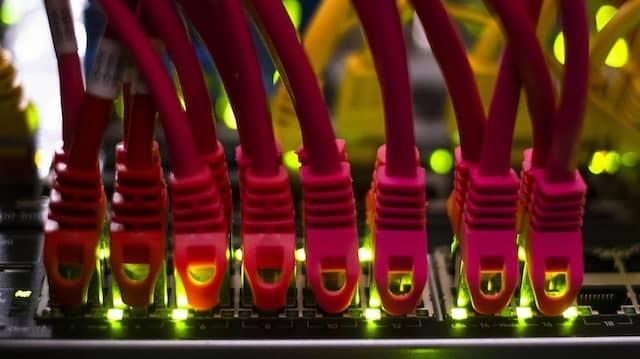 Daten- und Netzwerkkabel an einem Internetserver
