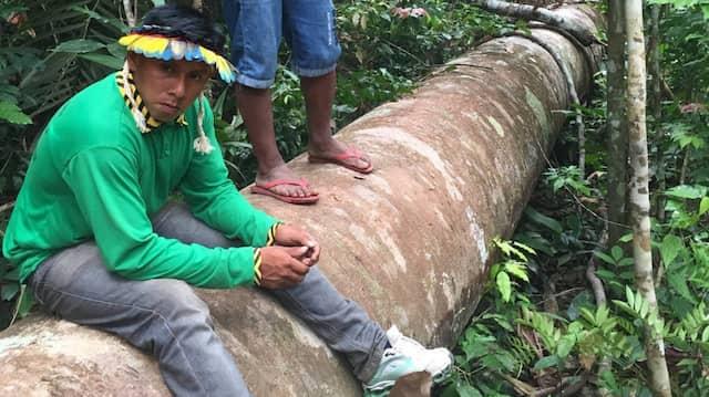 Ka'apor-Indios in Brasilien.