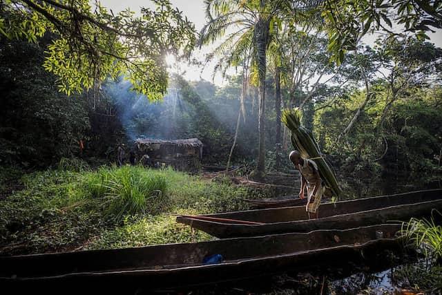 Mohamed Esimbo Matongu bringt Schilf zur Bedachung seiner kleinen, illegalen Jagdhütte.