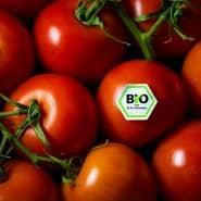 Gemüse oder Obst mit Bio-Siegel kaufen Verbraucher im direkten Handel gerne – doch wie sieht es bei Essengehen aus?
