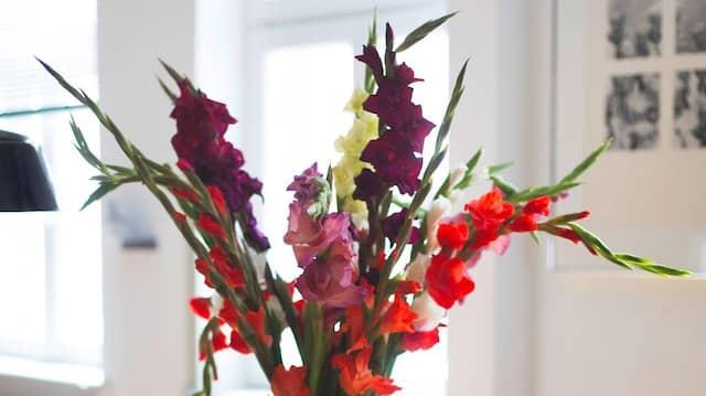 Seit Corona hat der Künstler immer einen Strauß Blumen in seinem Atelier stehen.