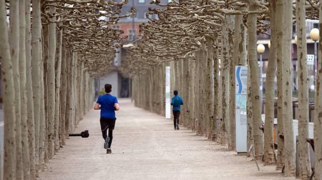 Auf einsamer Flur: Ob im Park oder der Stadt wirklich mehr Distanz gehalten wird, zeigen Googles Bewegungsdaten.