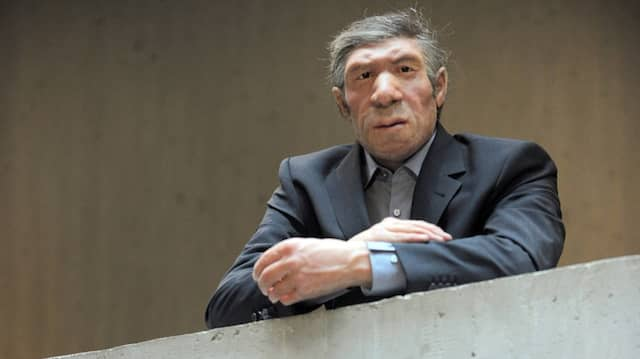 Eine menschliche Nachbildung – und Stilisierung – im Neandertal-Museum in Mettmann.