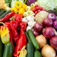 Was ist gesund? Besser ausgebildet und mit modernen Lehrmaterialien sollen Pädagogen Kinder über gesunde Ernährung aufklären.