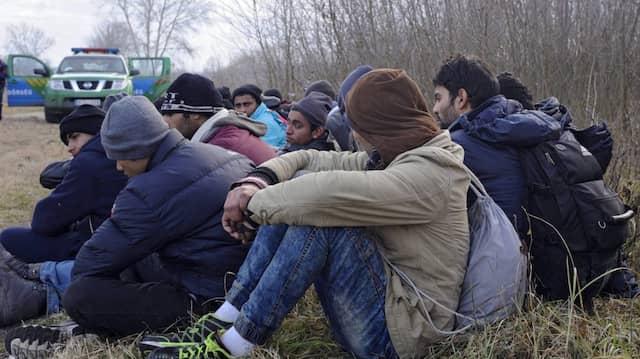 Flüchtlinge Anfang Februar bei Roszke nahe der ungarisch-serbischen Grenze