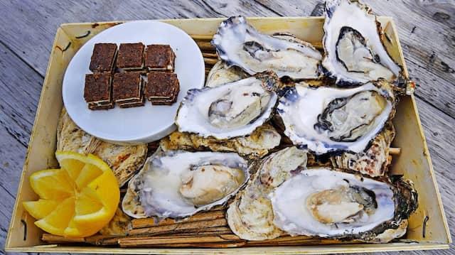Wiegen 70 bis 90 Gramm pro Stück: Die Sylter Austern