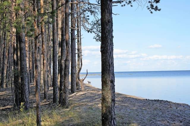 Hotels sucht der Besucher auf der kleinen Ostseeinsel vergebens.
