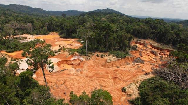 Gerodeter Regenwald in Brasilien
