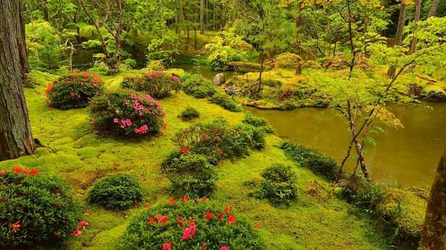 Der Saiho-ji-Tempel ist auch als Kokedera-Tempel, also Moos-Tempel, bekannt.