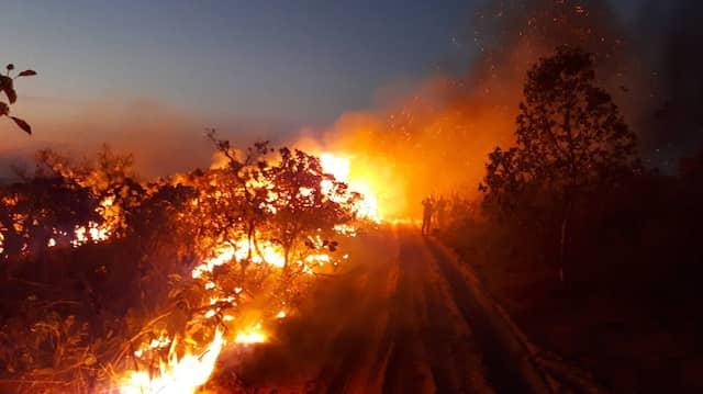"""""""Unser Haus brennt"""""""