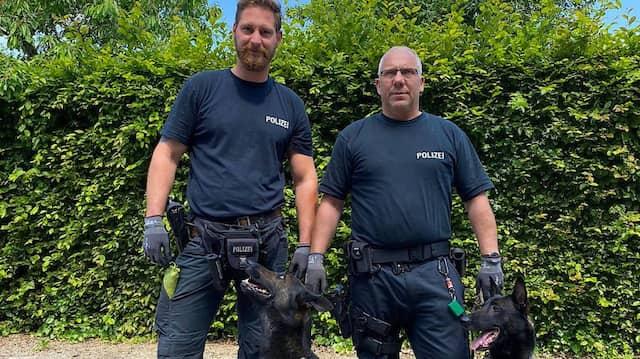 """Münster: Die Datenspeicherspuerhunde """"Theo"""" (l) und """"Jupp"""" sitzen neben ihren Diensthundeführern."""