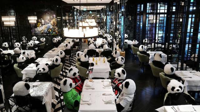 """""""Panda-Mie"""" nennt der Inhaber dieses Restaurants in der Innenstadt von Frankfurt seine raumfüllende Installation, bei der Im Dezember 20202 statt menschlicher Gäste riesige Plüsch-Pandabären an den eingedeckten Tischen sitzen. (Symbolbild)"""