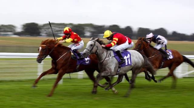 Pferderennen: Vermögensaufbau ist ein Marathonlauf, kein Sprint