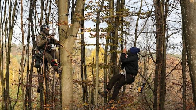 Dannenröder Forst: Polizisten holen bei einem Großeinsatz Aktivisten aus den Bäumen.