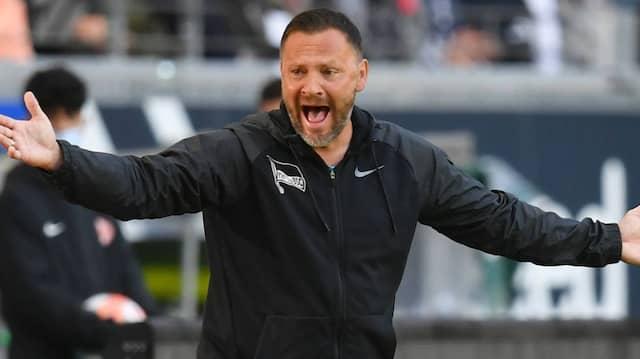Lautstark am Spielfeldrand: Berlins Trainer Pal Dardai