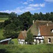 Ein abgelegenes Gehöft am Waldrand mit Weiden und Scheune: Traum- und Problemimmobilie zugleich