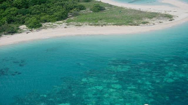 Hier am Cape York am Great Barrier Reef scheint das Ökosystem der Korallenbänke noch intakt zu sein, März 2016.