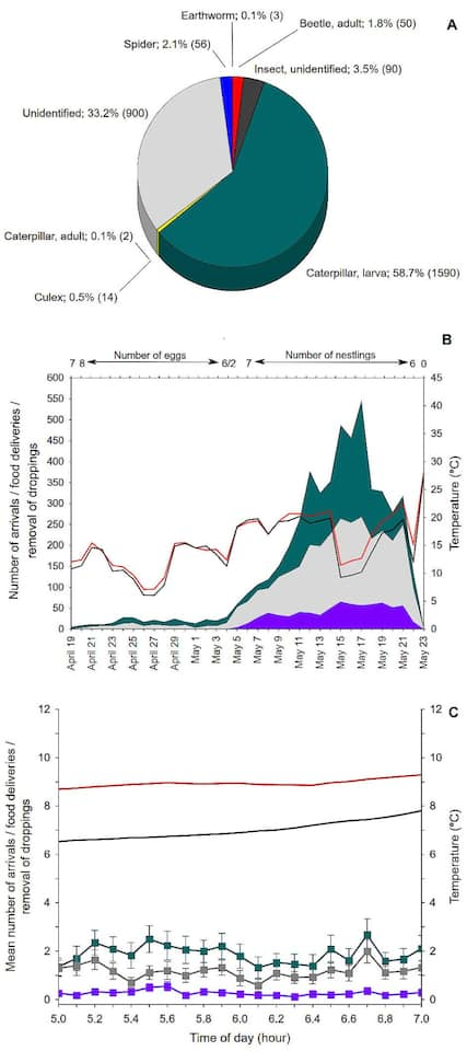 Bürgerwissenschaftler hielten grafisch das Verhalten von Vögeln in den Brutkästen fest.